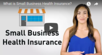 what is small business health insurance